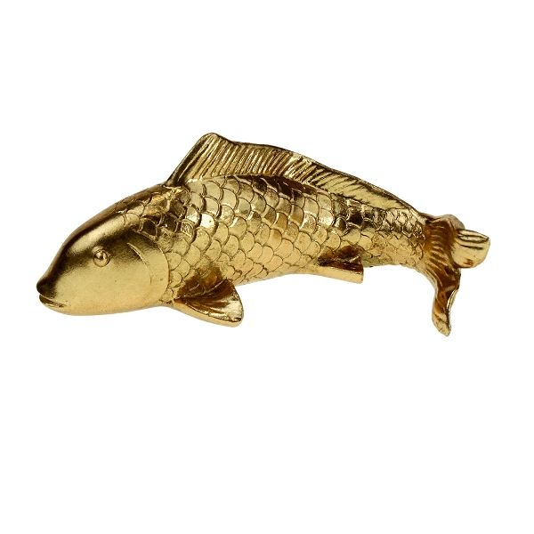 Vis goud