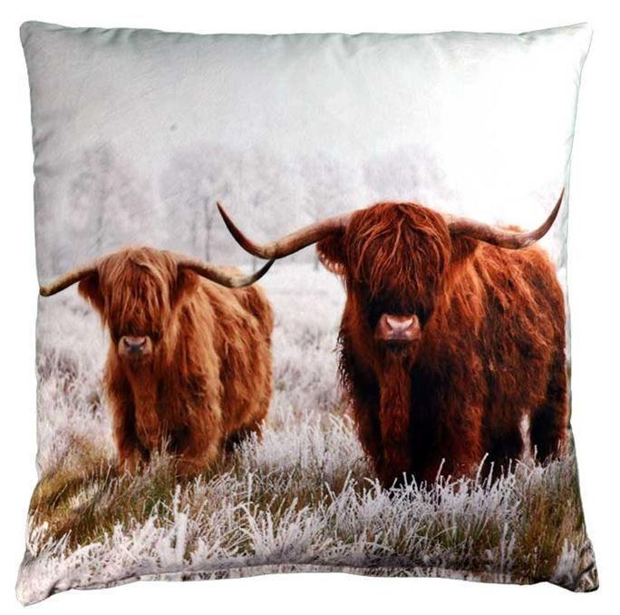 Kussen Schotse hooglanders