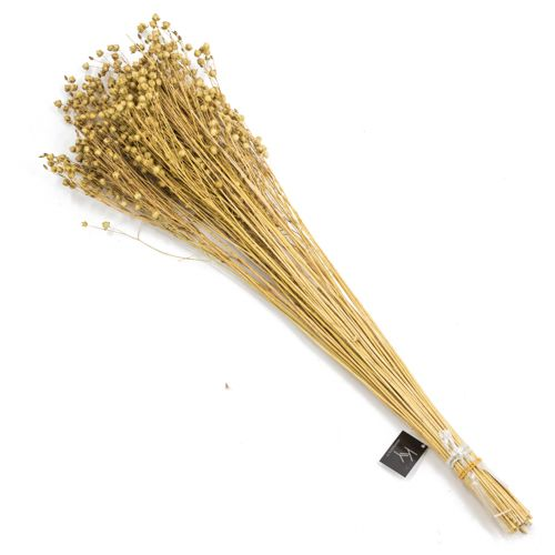 Bos droogbloemen flax