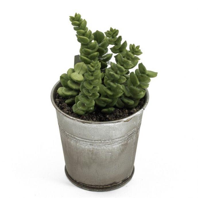 Succulent in potje kunst