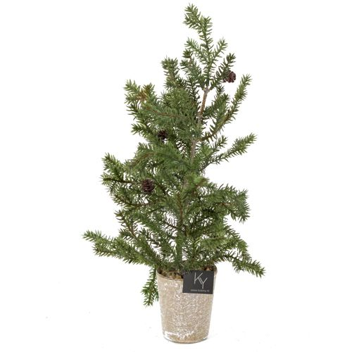 Mini kerstboom