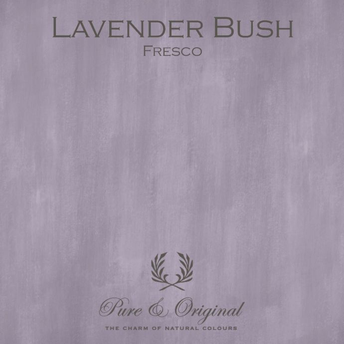 Pure & Original Fresco Lavender Bush