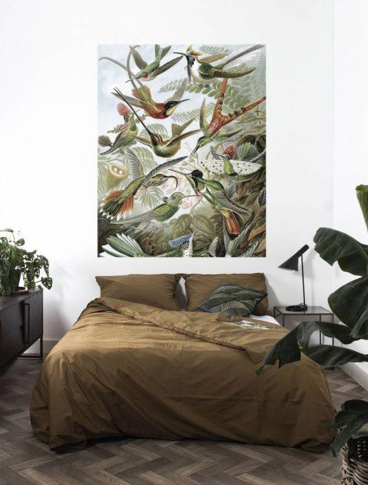 Behangpaneel Exotische vogels