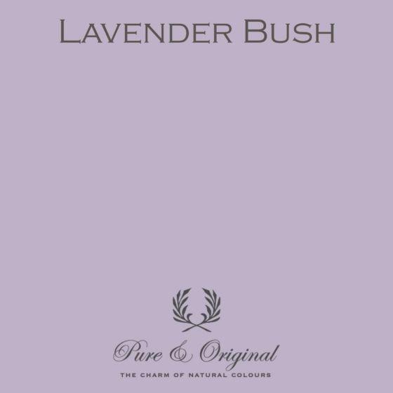 Pure & Original Licetto Lavender Bush