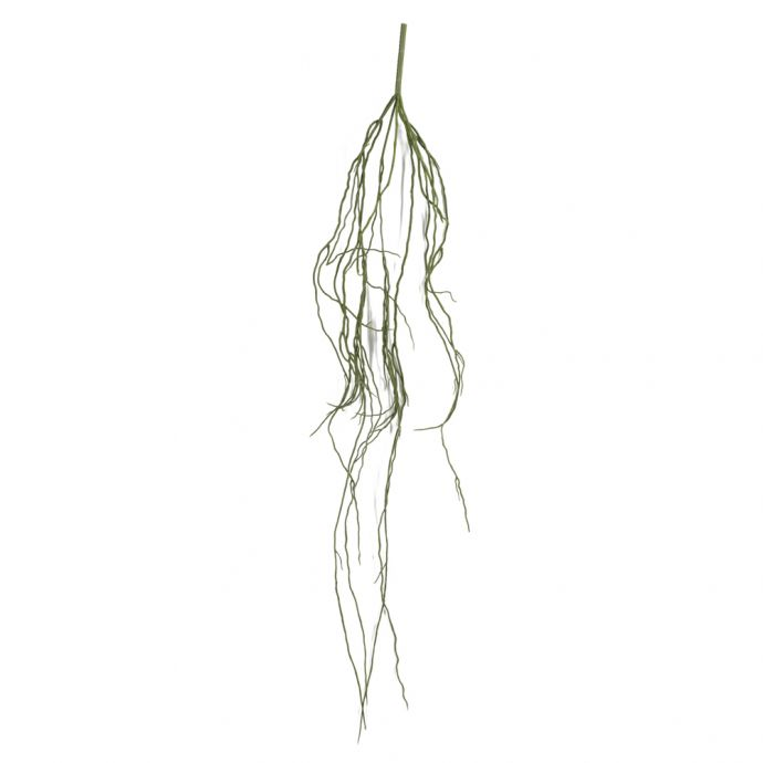 Root hair hangplant